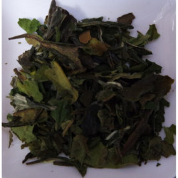Thé blanc de Chine Fujian pointes d'argents